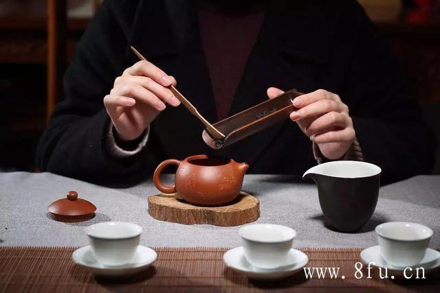十年老白茶,是岁月带来的惊喜!